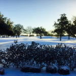 Meanwhile, Texas Weather Event Cancellations and Re-Scheduling